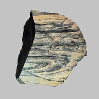 oil shale rock history origin